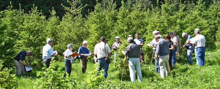 Le FOGEFOR : Apprendre à gérer sa forêt
