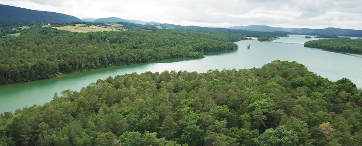 Forêt de production et de loisirs aux confins de l'Aude et de l'Ariège