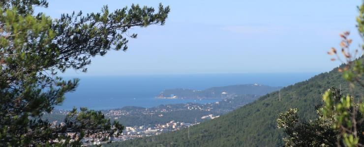 Forêt Varoise aux portes de Toulon