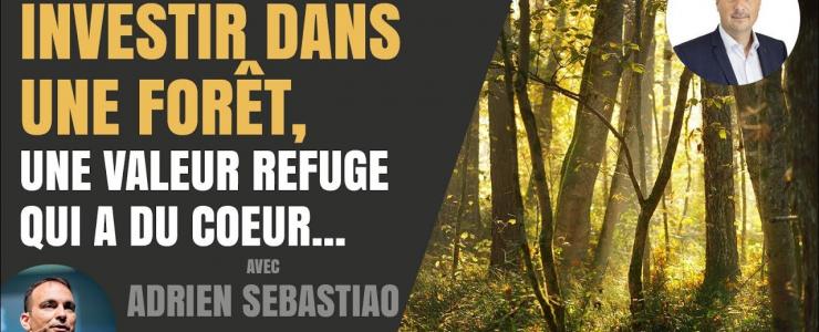 La forêt : une valeur refuge ?