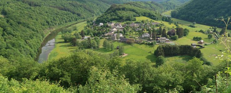 Les Belges, premiers acheteurs étrangers de forêts Françaises