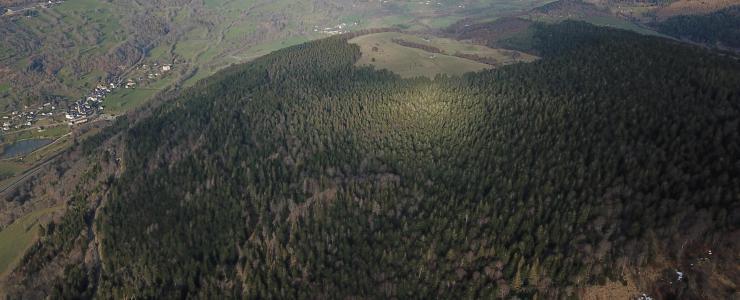 Hêtraie-Sapinière dans le Cantal