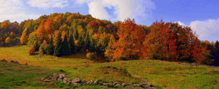 70 Haute Saône - Agriculture et forêts se partagent le territoire