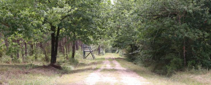 Hunting enclosure in Dordogne