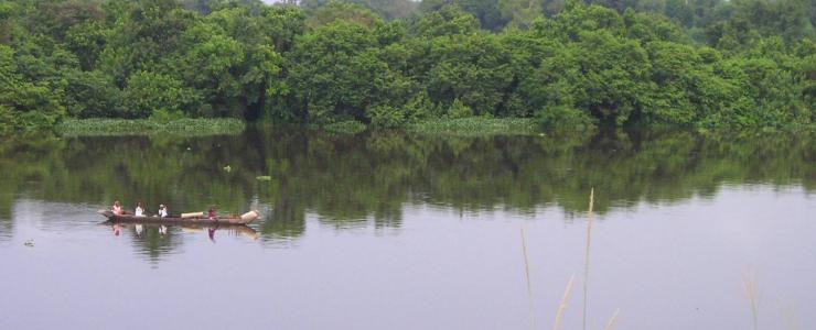Fiscalité et forêts : entre contraintes et incitations