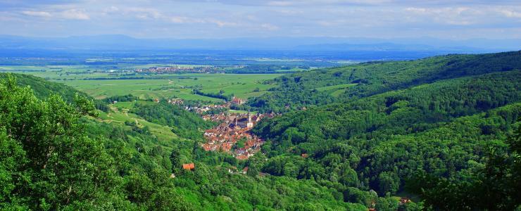67 Bas Rhin - Des forêts réputées