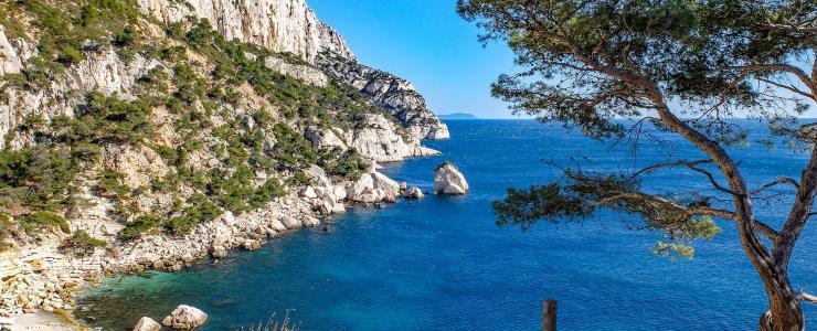 13 Bouches du Rhône - Une valeur patrimoniale élevée des forêts