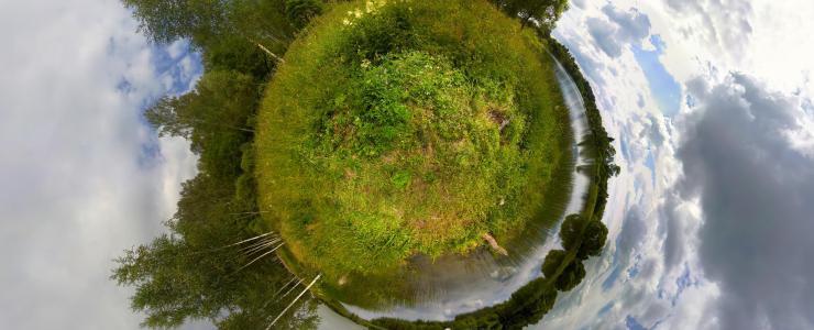 Projet Carbone Forestier : Pour une atténuation du changement climatique