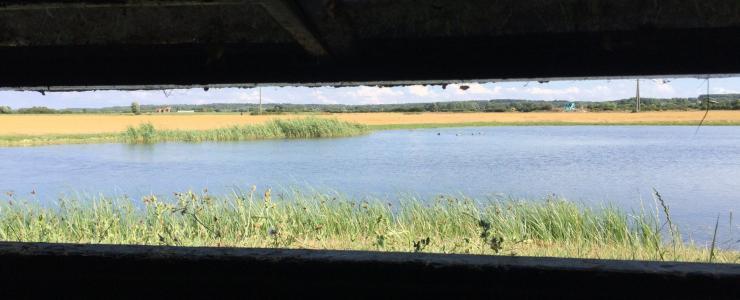 Hutte de chasse dans le Pas-de-Calais