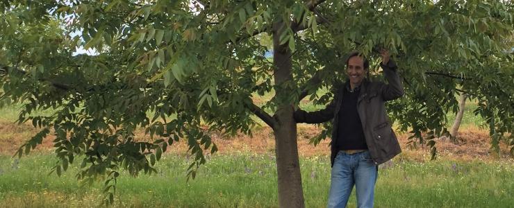 Focus sur un expert forestier au Portugal