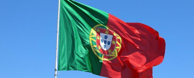 Acheter une forêt au Portugal
