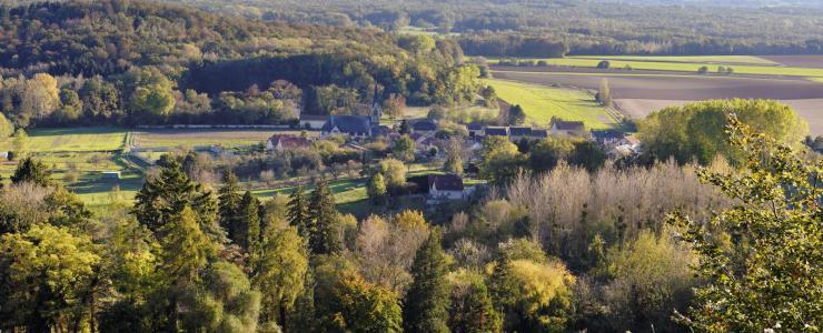 02 Aisne - Un climat propice aux forêts de qualité