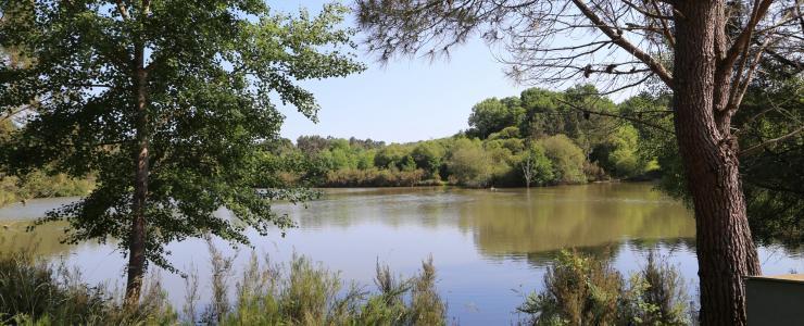 Couto de caça em Dordogne