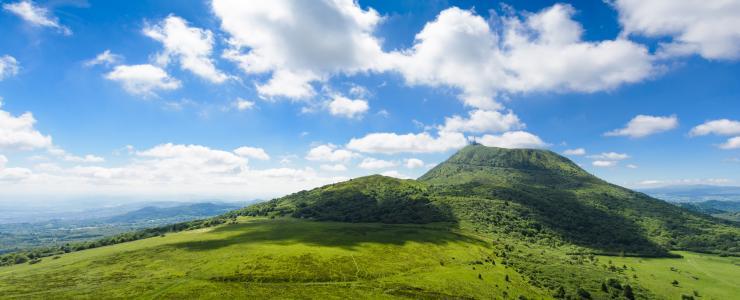 Forêts privées en région Auvergne Rhône Alpes :  Des aides destinées aux propriétaires