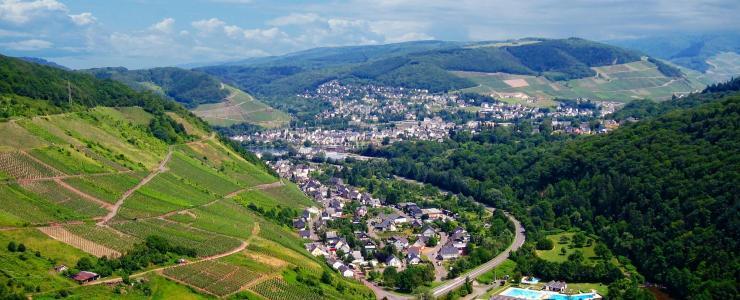 57 Moselle - Une propriété privée rare, la vente de forêts en est d'autant plus prisée