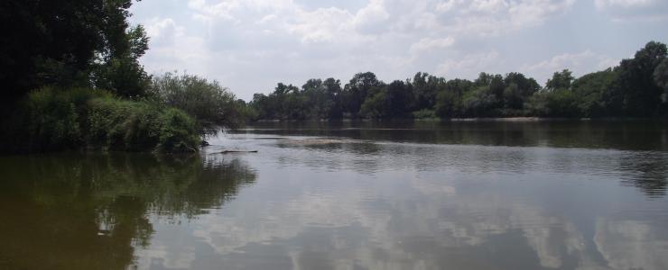 Propriété à vocation agro-sylvo-cynégétique en bord de Loire