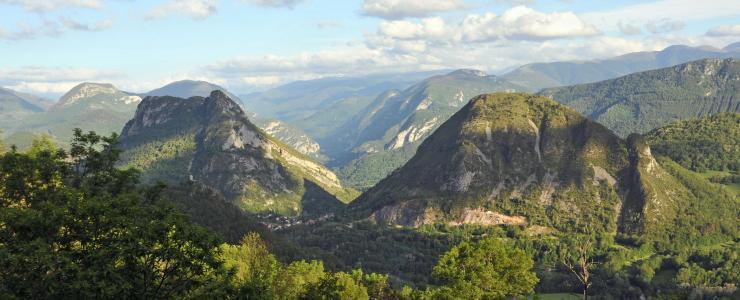 Ariège-Pyrénées, Un massif forestier qui ne laisse pas indifférent