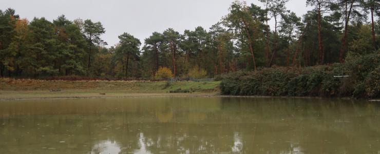 Parc de chasse dans la Vienne