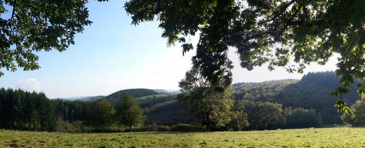 Le massif forestier du Morvan :  Entre exploitation et développement touristique