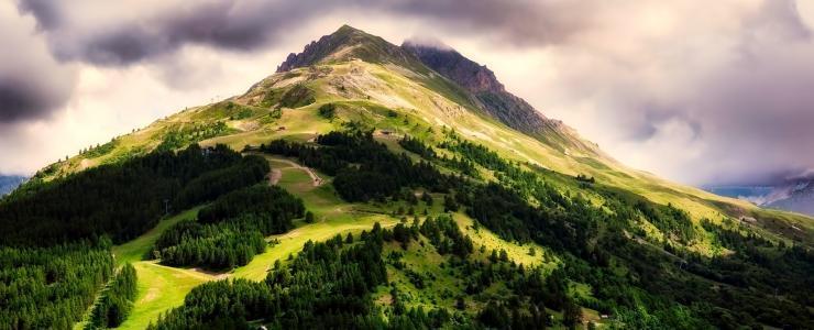 L'achat de Forêts en France : Les grandes régions forestières du territoire national