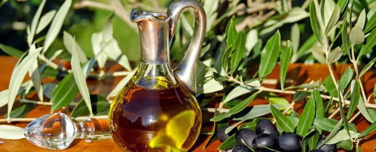 A cultura de olival – Entre tradição milenar e modernidade