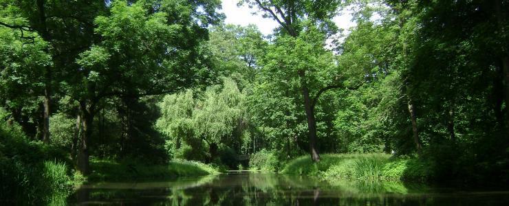 01 Ain - De beaux domaines forestiers agrémentés d'étangs