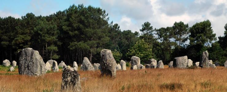 56 Morbihan - Des forêts à un bon rapport qualité/prix