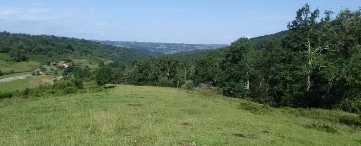 Enclos cynégétique avec divers bâtis dans les Hautes-Pyrénées