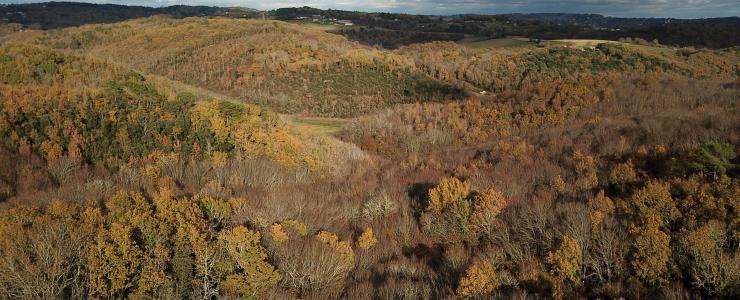 Parcelles boisées en Nouvelle Aquitaine