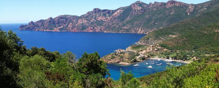 Corsica – Outstanding forests